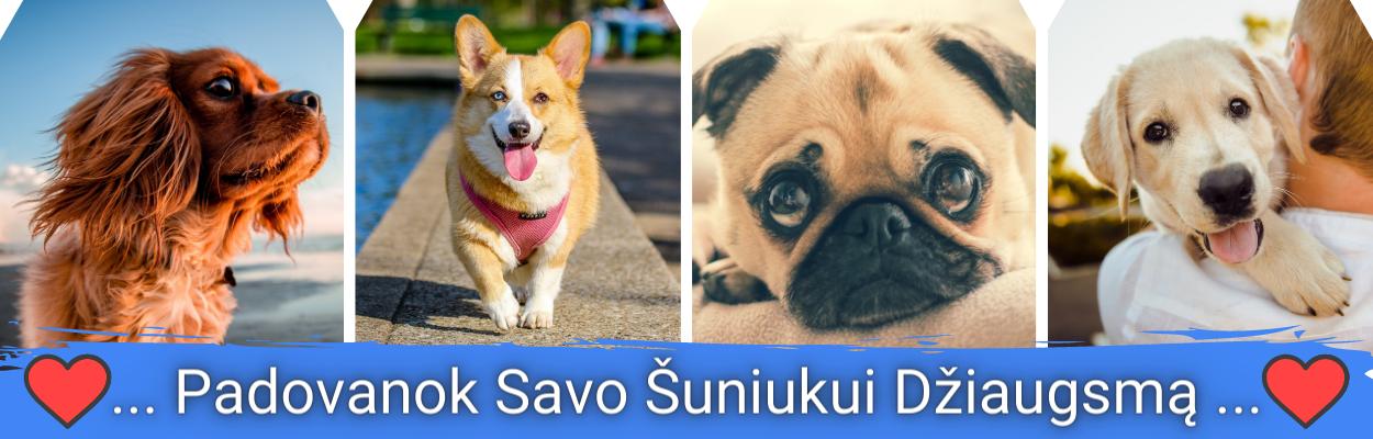 Padovanok savo šuniukui džiaugsmą - prekių šunims internetinė parduotuvė MyDog.lt